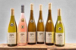 """Neues Weinpaket """"Goldregen"""""""